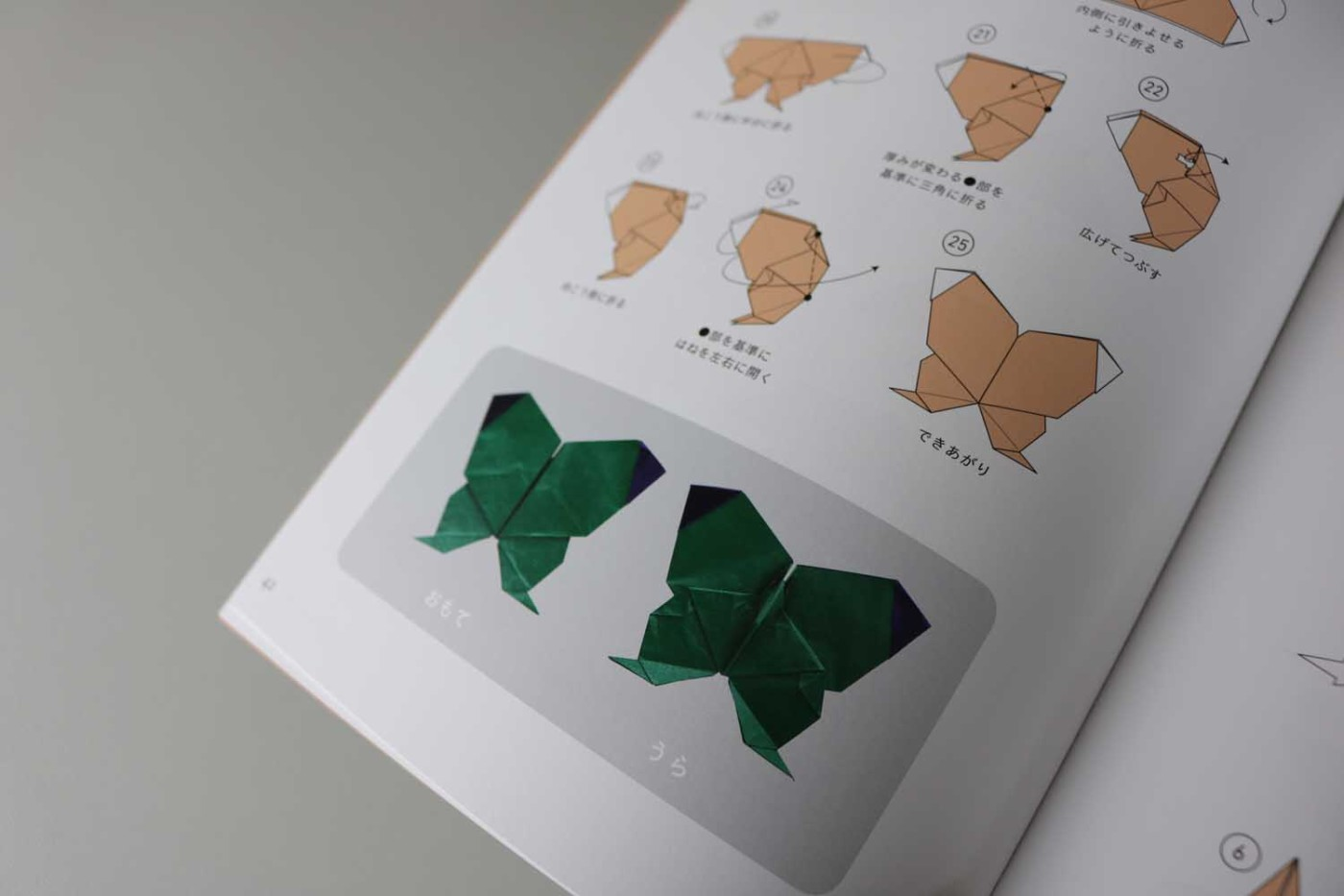 Origami Insects – VIERECK VERLAG - photo#12
