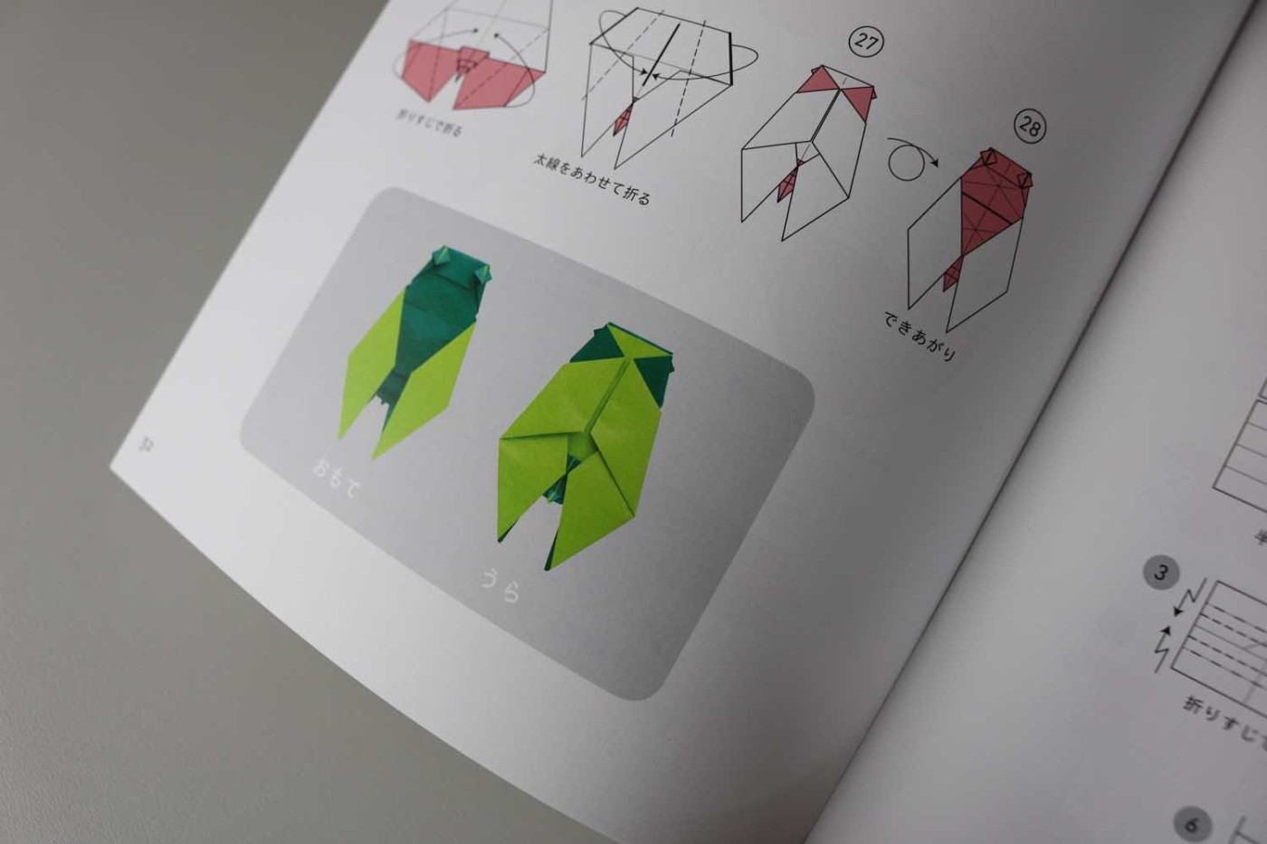 Origami Insects – VIERECK VERLAG - photo#20