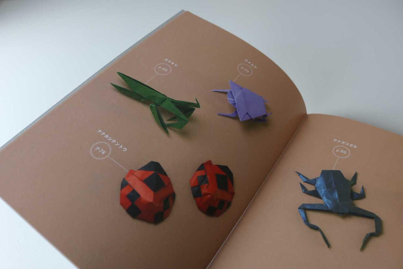 Origami beetle (With images) | Origami art | 933x1400