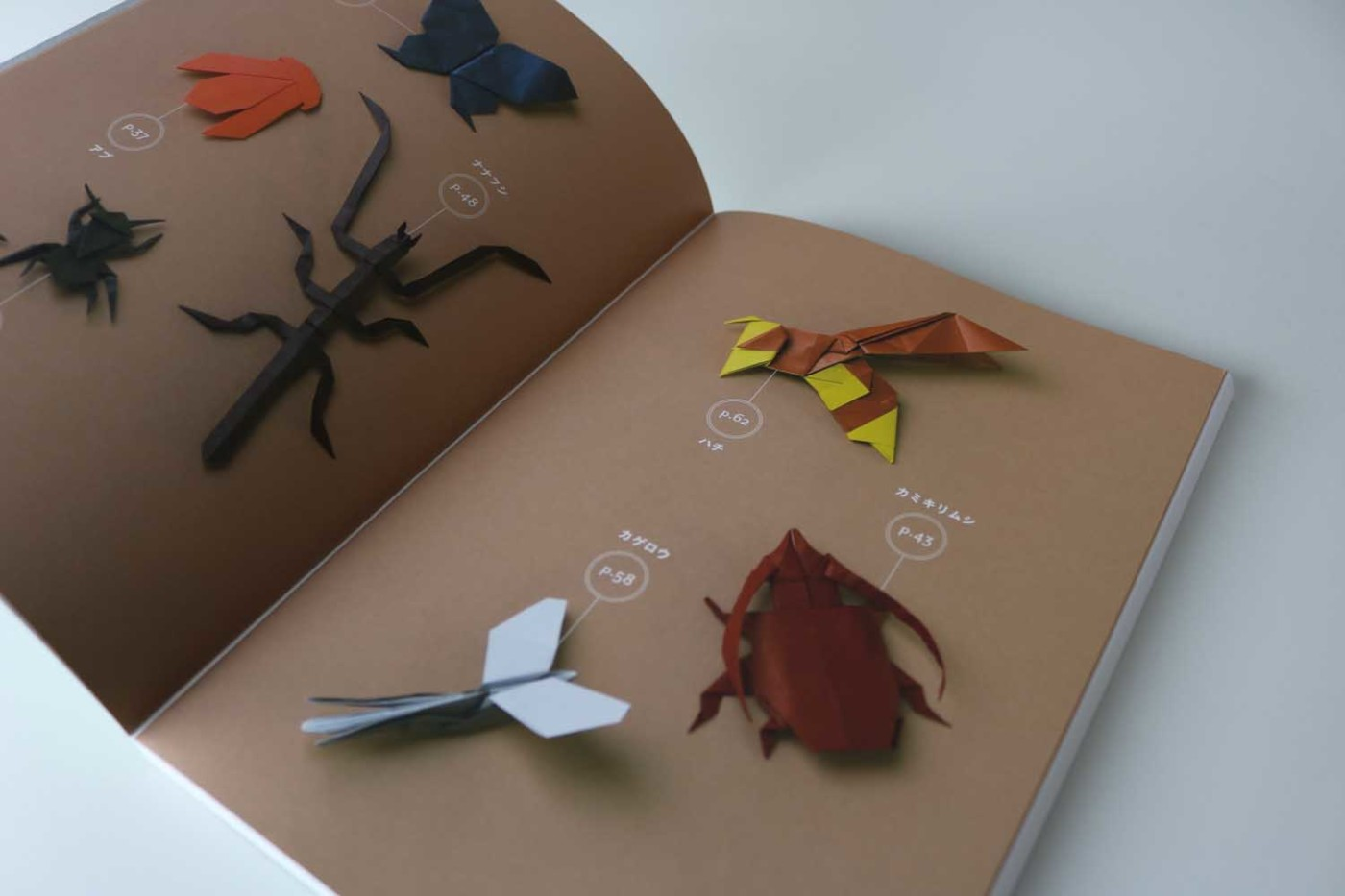 Origami Insects – VIERECK VERLAG - photo#31