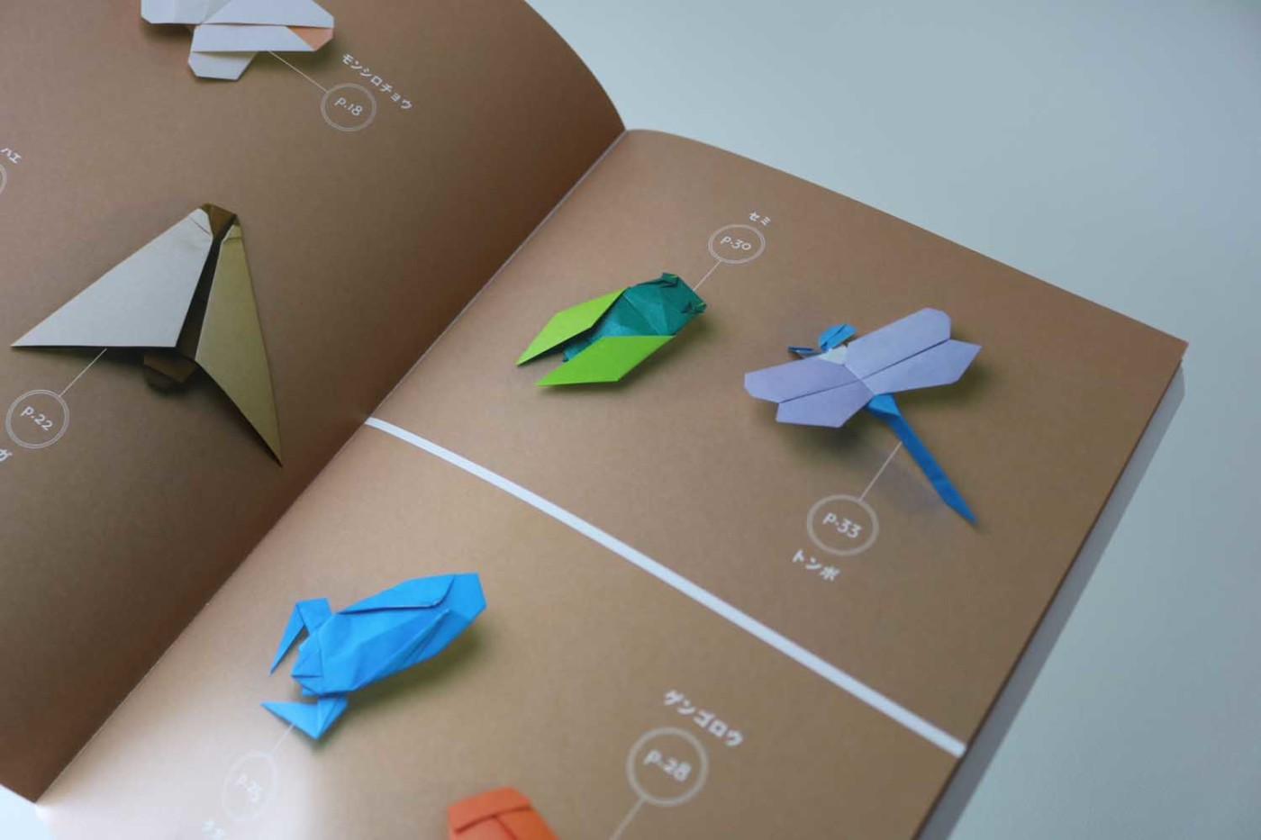 Origami Insects – VIERECK VERLAG - photo#15