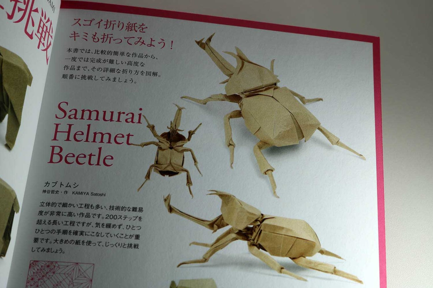 Step By Step Instructions How To Make Origami A Beetle Stock ... | 933x1400