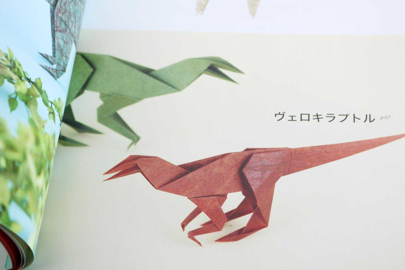 Origami Dinosaurs – VIERECK VERLAG - photo#8